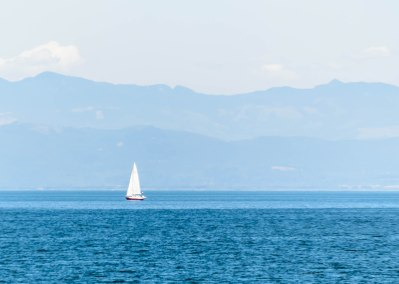 The Salish Sea