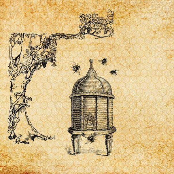 beehive-3434143_1920.jpg
