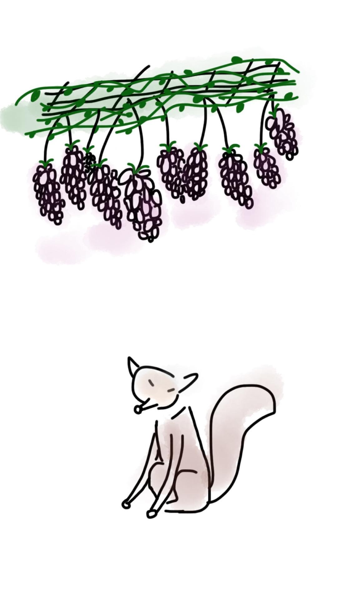 fox-1278118_1920