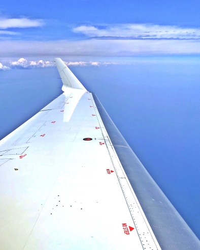 "Window seat over Lake Michigan. The wing says ""No Step."""