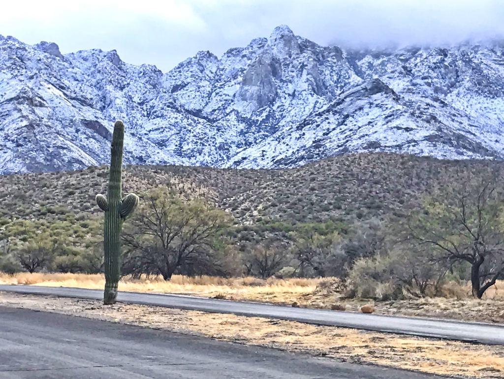 This image has an empty alt attribute; its file name is winter-in-tucson.jpg